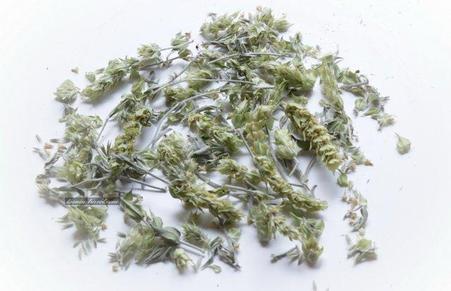 горный чай греции
