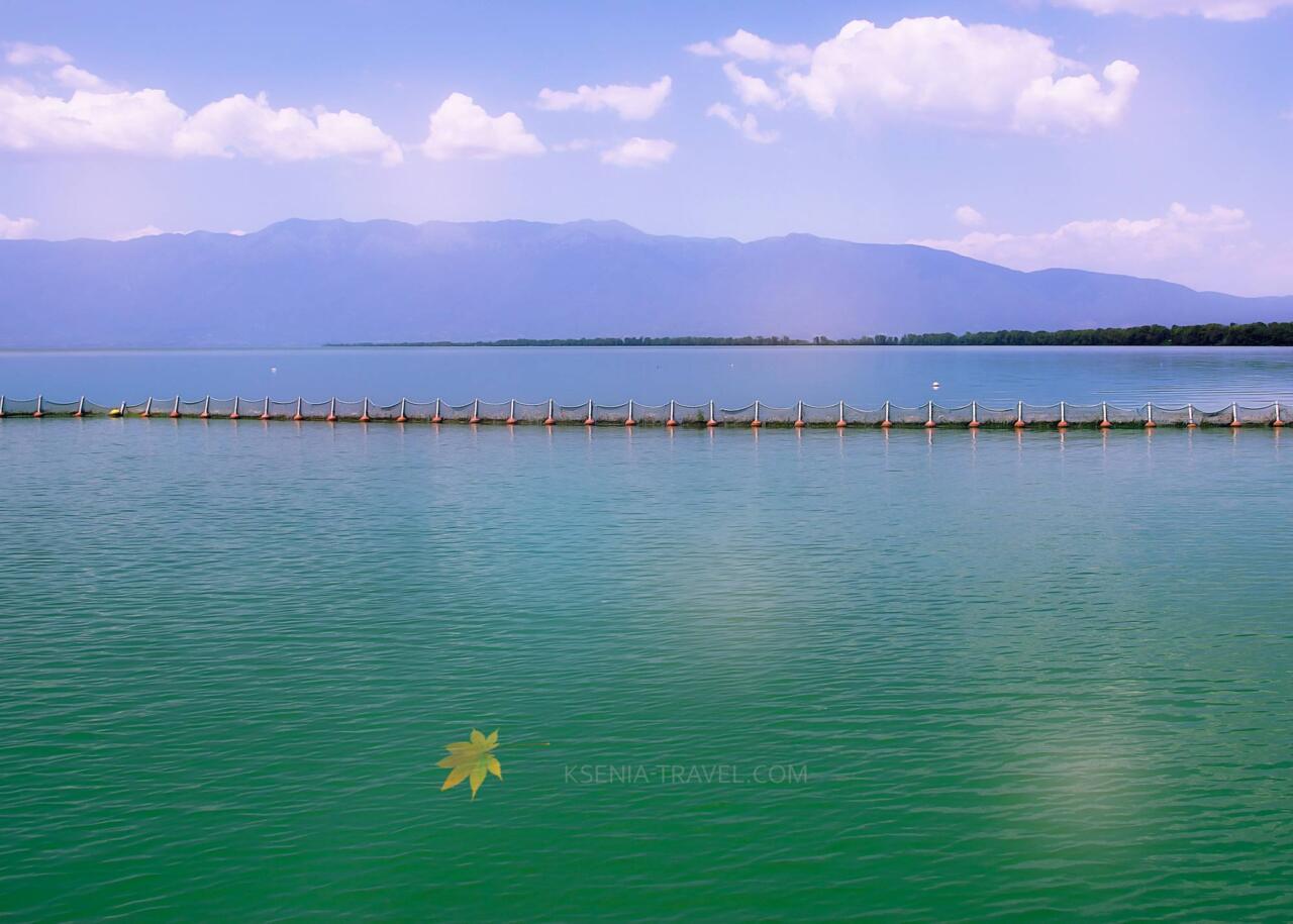 озеро Керкини, экскурсии с гидом из Салоники
