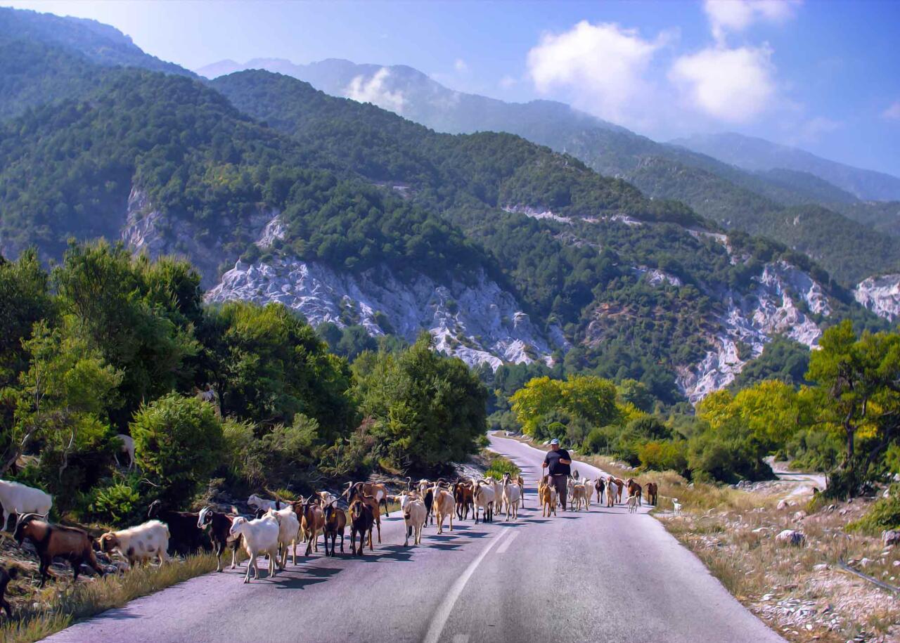 экскурсия на Олимп, горы Греции